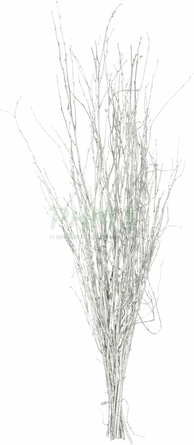 Bouleaux peints blanc